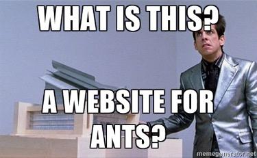 Chris_ants1.jpg