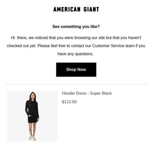 eCommerce Automation Abandoned Cart Email Example