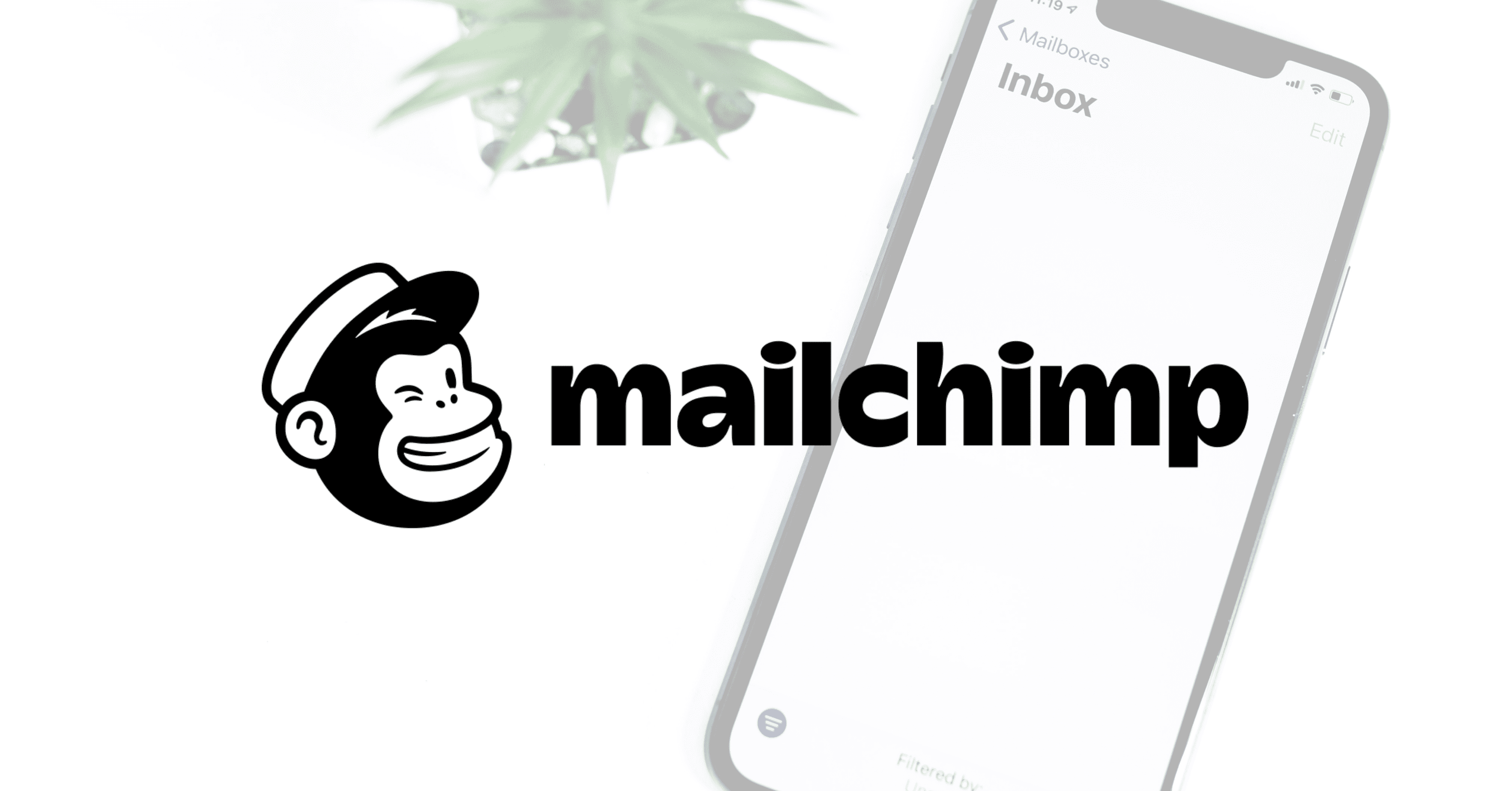 Mailchimp Email Marketing: A Look At The Tool's Features